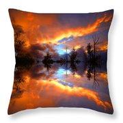 The Forgotten Sunset Throw Pillow