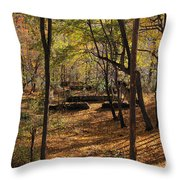 The Foundation  Throw Pillow