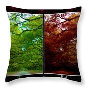 The Four Seasons- Featured In Comfortable Art And Newbies Groups Throw Pillow