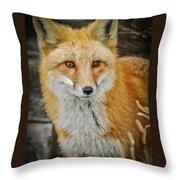 The Fox 8 Throw Pillow