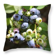 The Freshest Blueberries Throw Pillow