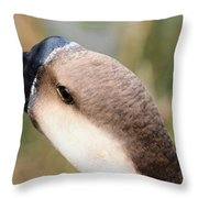 The Friendly Guy Throw Pillow