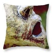 The Frozen Scream Throw Pillow