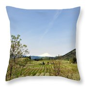 The Fruits Of  Mount Hood Throw Pillow