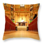 The Function Throw Pillow