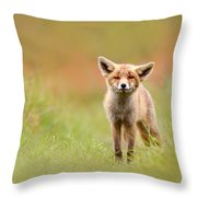 The Funny Fox Kit Throw Pillow