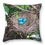 The Future's Nest Egg Throw Pillow