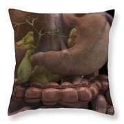 The Gallbladder And Stomach Throw Pillow