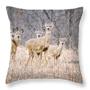 The Gang Throw Pillow