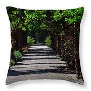 The Garden Pathway 2 Throw Pillow