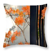 The Gatekeepers Throw Pillow