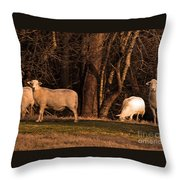 The Gazing And Grazing Sheep Throw Pillow