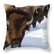 The General And His Troups Throw Pillow