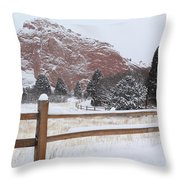 The Gentle Thief Of Colours Throw Pillow
