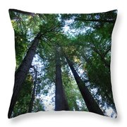 The Giant Redwoods I Throw Pillow