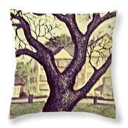 The Gift Of Winter 1 Throw Pillow
