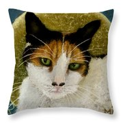 The Gifted Healer Throw Pillow