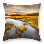 The Glades At Sunset Throw Pillow