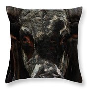 The Glare Throw Pillow