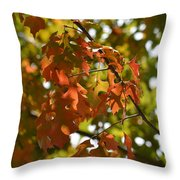 The Glory Of Autumn Throw Pillow