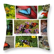 The Glory Of Butterflies 3 Throw Pillow