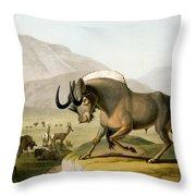 The Gnoo, 1804 Throw Pillow