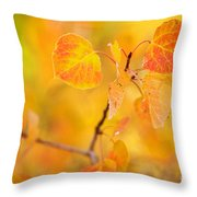The Gold Standard Throw Pillow