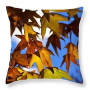 The Golden Hues Of Autumn  Throw Pillow