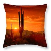 The Golden Southwest Skies  Throw Pillow