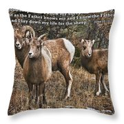 The Good Shepherd's Sheep Throw Pillow