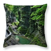The Gorge Trail Throw Pillow