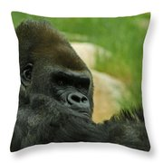 The Gorilla 2 Throw Pillow