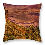The Grand Canyon II Throw Pillow