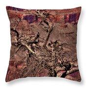 The Grand Canyon Viii Throw Pillow