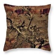 The Grand Canyon Vintage Americana V Throw Pillow