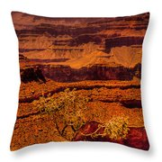 The Grand Canyon X Throw Pillow