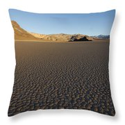 The Grandstand Throw Pillow