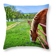 The Grass Is Always Greener... Throw Pillow