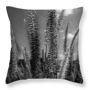 The Grass Is Greener  Throw Pillow