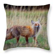 The Grateful Vixen Throw Pillow
