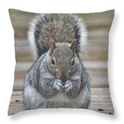 The Gray Squirrel Throw Pillow
