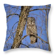 The Great Gray Throw Pillow