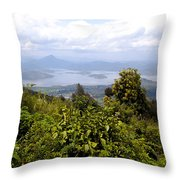 The Great Lakes Throw Pillow