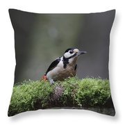 The Great Spotted Woodpecker Throw Pillow