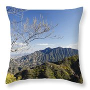 The Great Wall 834 Throw Pillow