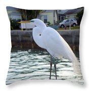 The Great White Egret Throw Pillow