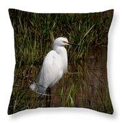 The Great White Heron Throw Pillow