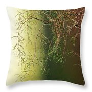 The Green End Of The Spectrum  Throw Pillow
