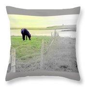 The Long Green Fields Back Home  Throw Pillow