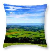 The Green Green Grass Of Home Throw Pillow